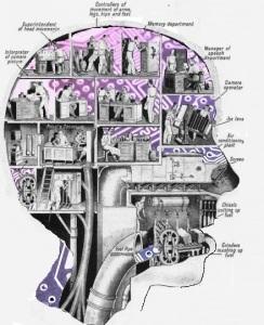 Brain tinkering 2
